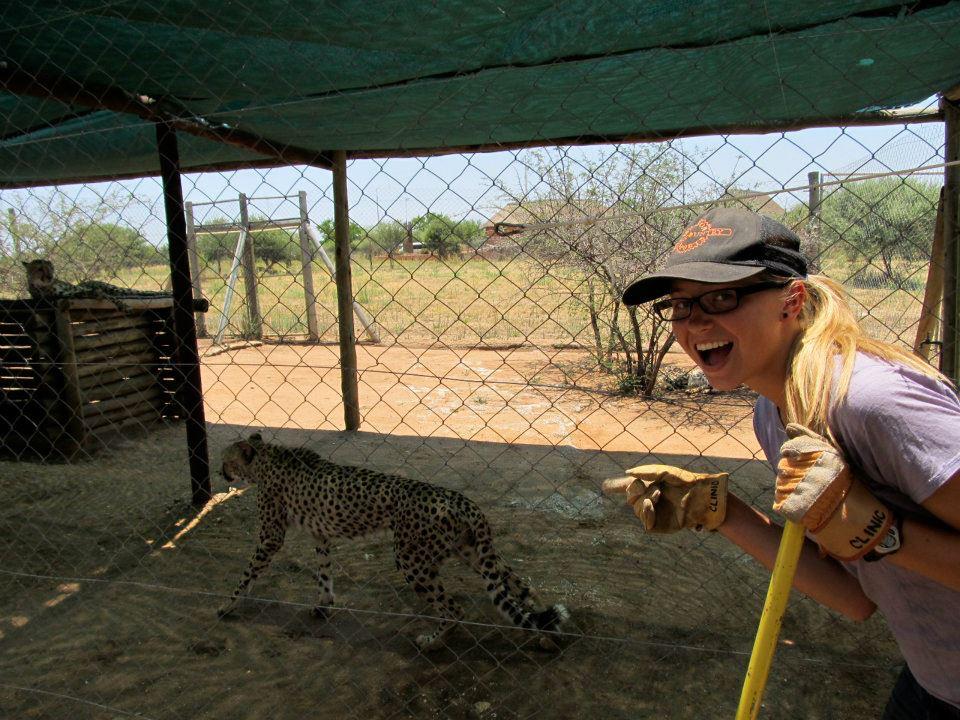 Service w Cheetahs