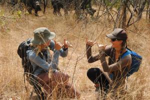 Sarah and Beth are Rhinos